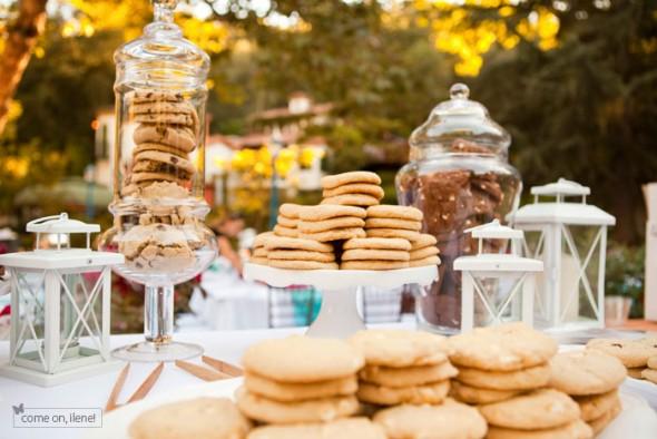 Σε ένα πρωινό ή απογευματινό event, όπως είναι ένα παιδικό πάρτυ, μια εταιρική εκδήλωση, η δεξίωση ενός γάμου ή μιας βάπτισης, αποκτά μεγαλύτερο γευστικό ενδιαφέρον με ένα cookies bar, στο οποίο πρωτοστατούν ιδιαίτερα βάζα με καπάκι